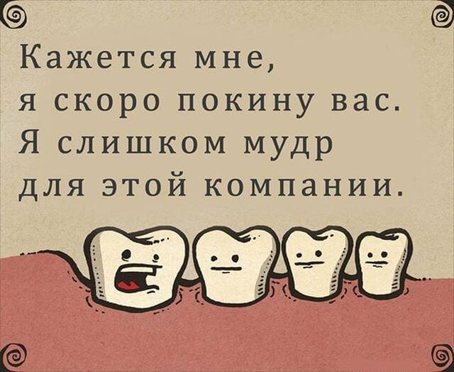 Шутка про зуб мудрости