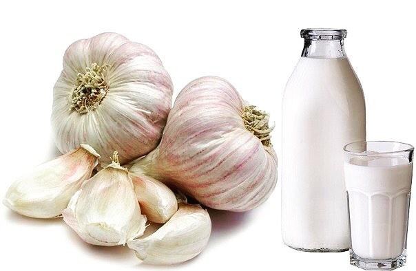 Чеснок с молоком от давления