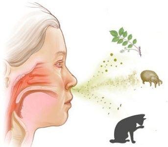 Причины заложенности носа и головной боли