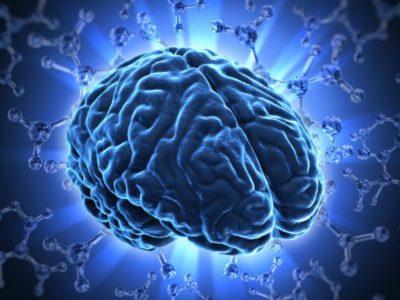 Энцефалопатия головного мозга у взрослых