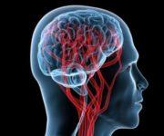 Рак мозга — Симптомы и методы лечения рака головного мозга, советы врачей